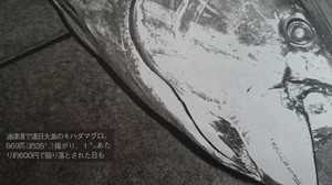 Sdsc_1442